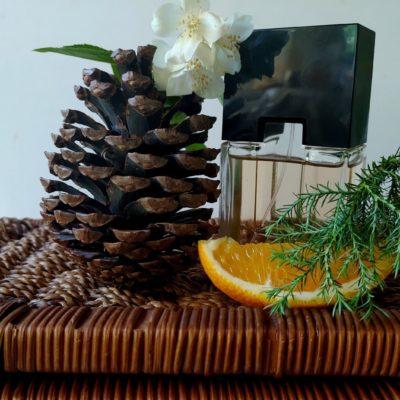 Древесные ароматы: обзор лучшего женского и мужского парфюма и правила выбора